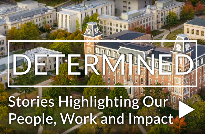 Determined: Stories Highlighting our people, Work and Impact